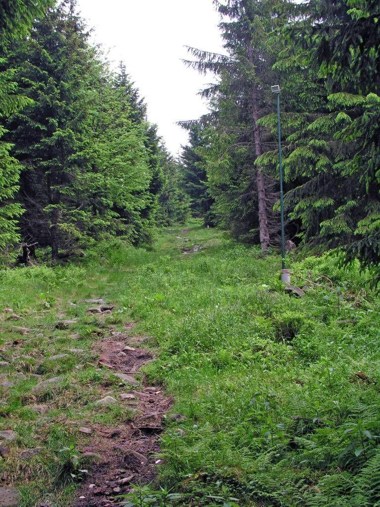 Spindlermühle, Fußweg von der Spindlerbaude Richtung Ort