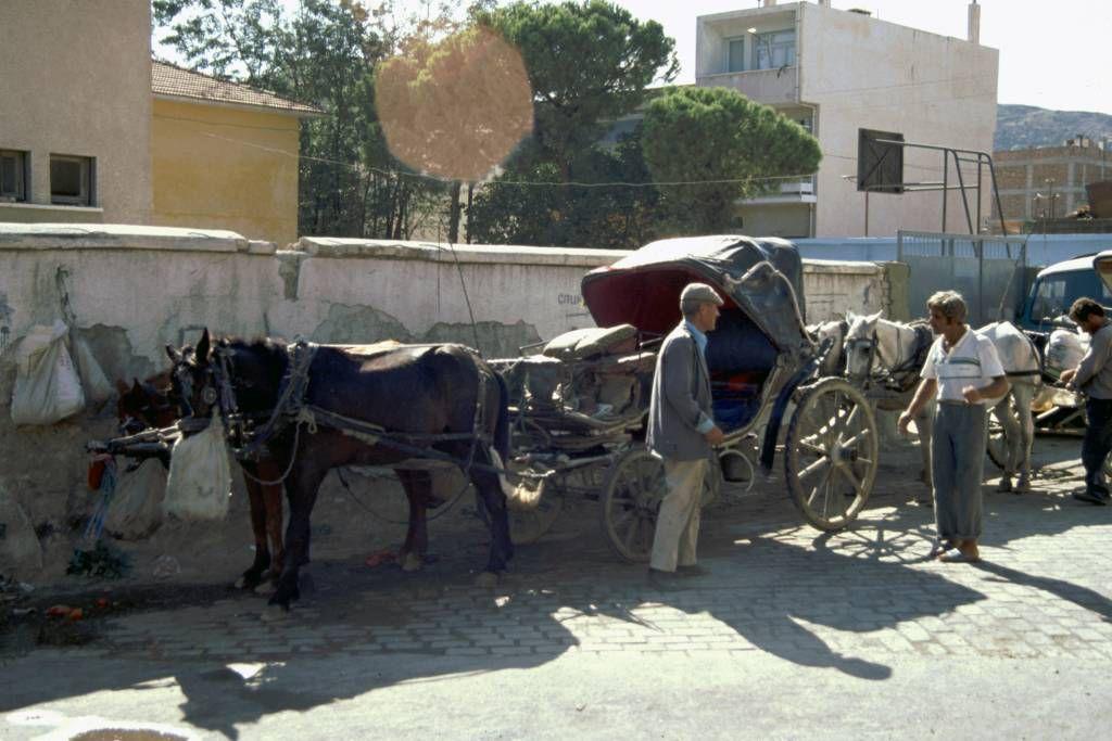 Kuşadası, Pferdekutschen