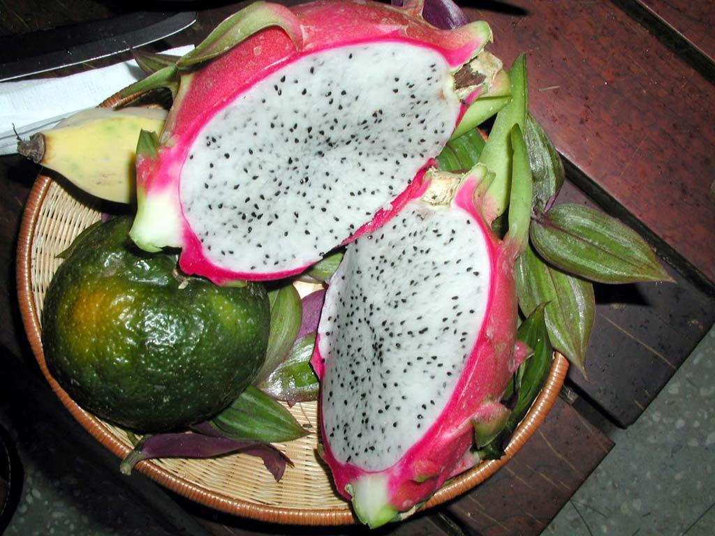Eine Drachenfrucht