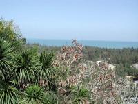 "Blick vom Marmorberg, dem Ngu Hanh Son, südlich Da Nang in Richtung ""China Beach"""