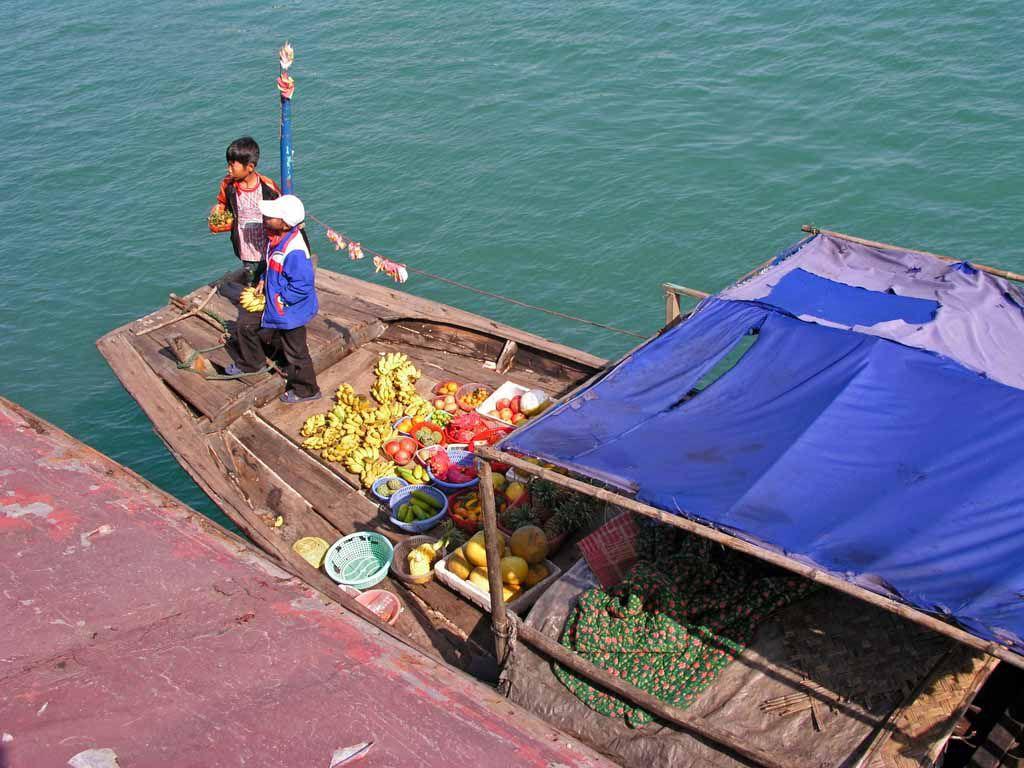 Halong Bucht, Kinder verkaufen Früchte