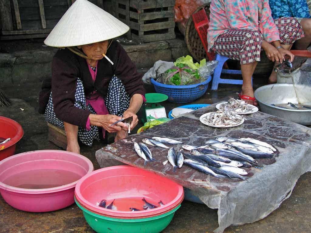 Hoi An, auf dem Fischmarkt