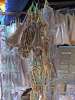 Nha Trang, getrocknete Fledermäuse und Seepferdchen