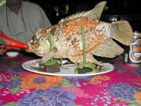 Fisch im Mekong Delta, vorher ...