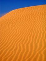 In den roten Dünen von Mui Ne