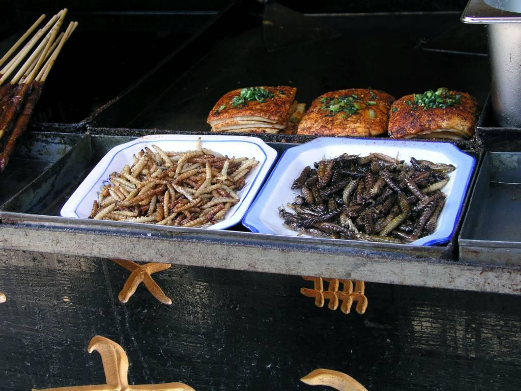 Lijiang, Altstadt, leckere Maden